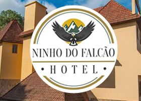 Logo Ninho do falcao